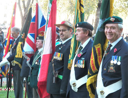 Remembrance Colours 2013