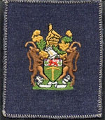 Station Warrant Officer